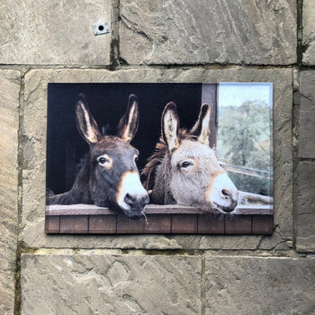 Doormat with donkey