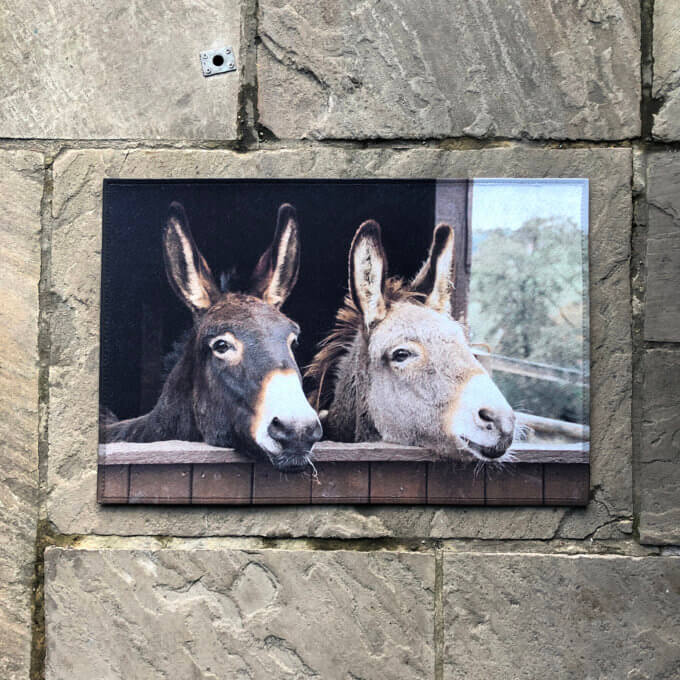 Doormat with donkey